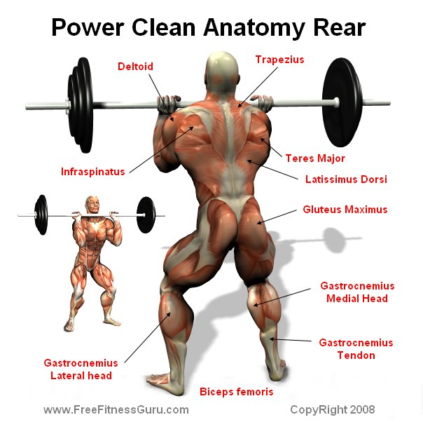 What is a power clean exercise