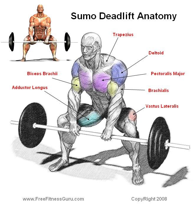 Tecnicas de Powerlifting Sumo%20deadlift%20combined