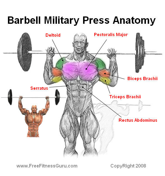 military press barbell